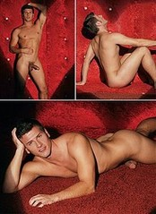 hung gay cock galleries